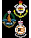 banner-logo-triservice